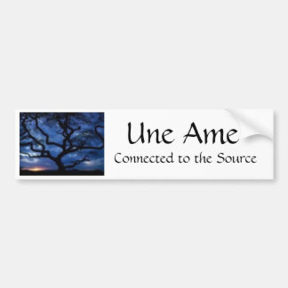 Une Ame, Connected to the Source Bumper Sticker