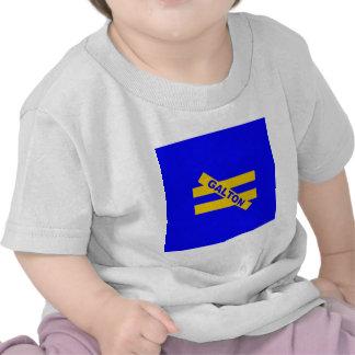 Unequality — Francis Galton T Shirts