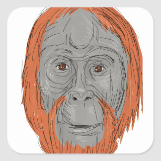 Unflanged Male Orangutan Drawing Square Sticker