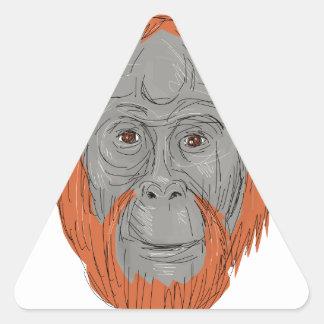 Unflanged Male Orangutan Drawing Triangle Sticker