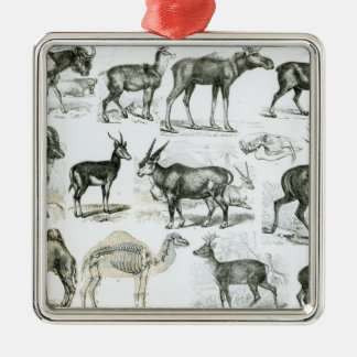 Ungalata or Hoofed Animals Metal Ornament