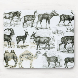 Ungalata or Hoofed Animals Mouse Pad