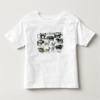 Ungulata o animales ungulados tee shirts