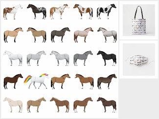 Unicorn Among Ponies