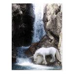 Unicorn and Waterfall Postcard