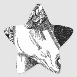 Unicorn B-W Products Star Sticker