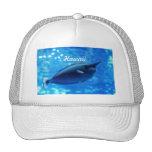 Unicorn Fish Hat