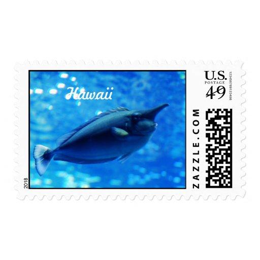Unicorn Fish Stamps