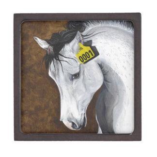 Unicorn: How Far Would We Go? Keepsake Box