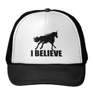 Unicorn I Believe Hats