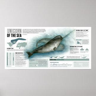 Unicorn of the Sea Poster