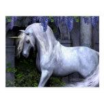 Unicorn Postcard