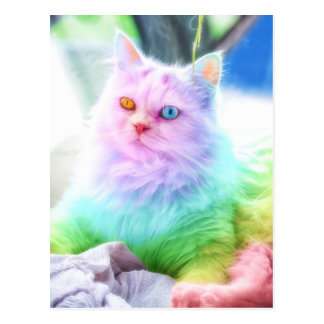 Unicorn Rainbow Cat Postcard