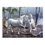 Unicorn Reuion Postcard