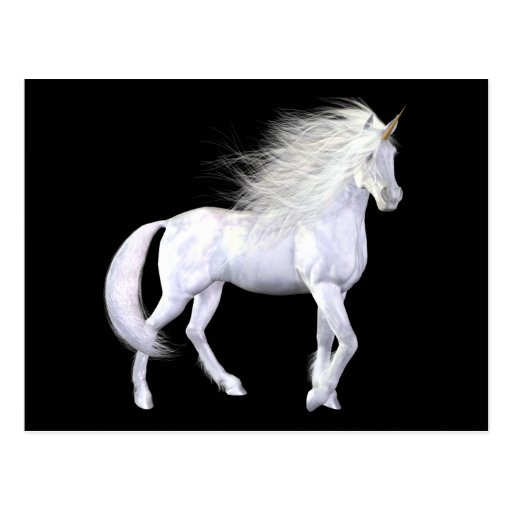 Unicorn White Beauty Postcard