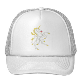 Unicorn with Golden Horn and Tail. Hat