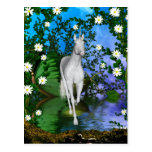 Unicornio místico adorable lindo tarjetas postales