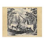 Unicornio y macho tarjeta postal