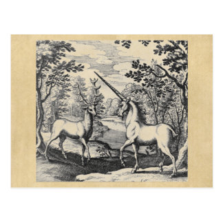 Unicornio y macho postal