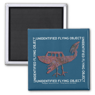 Unidentified Flying Object Refrigerator Magnet