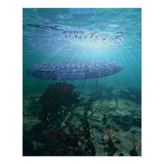 "Unidentified Submerged Object 24"" x 30"" Art Print"