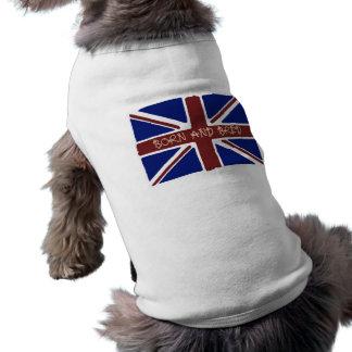 Union Jack Pet T Shirt