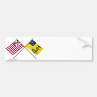 Unión y dólares magníficos cruzados de las bandera pegatina de parachoque