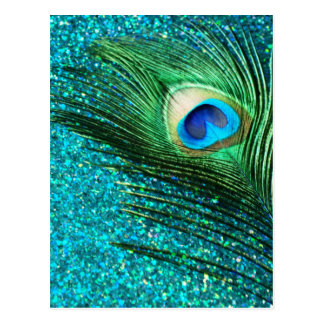 Unique Aqua Peacock Postcard