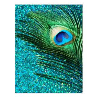 Unique Aqua Peacock Postcard
