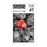 Unique Beauty Stamp