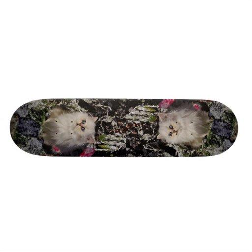 Unique Bicolored kitten Skate Board