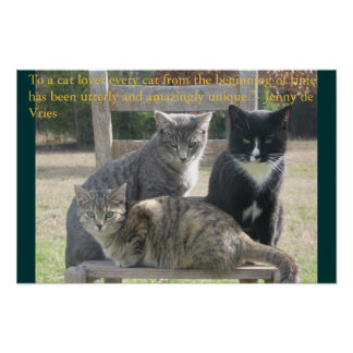 Unique cats poster