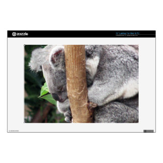 Unique Charming Sleeping Koala Bea Skins For Laptops