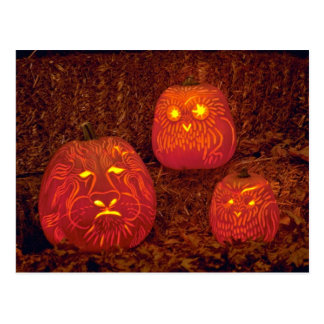 Unique Decorative carved pumpkins Post Card