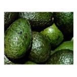 Unique Green avocado Postcard