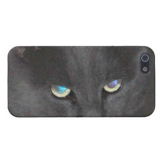 Unique Grey Kitty Cat Eyes iPhone 5 Case