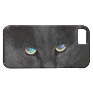 Unique Grey Kitty Cat w/ Colored Eyes iPhone SE/5/5s Case
