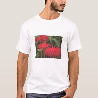 Unique Inula in red T-Shirt