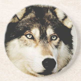 Unique Motivational Wolf Drink Coaster