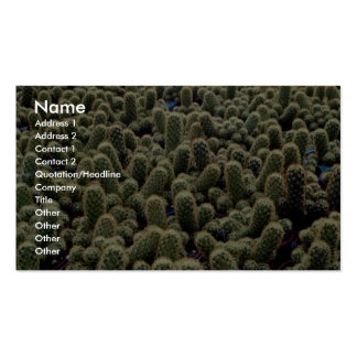 Unique Noto cactus Double-Sided Standard Business Cards (Pack Of 100)