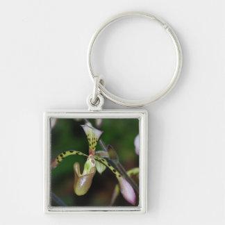 Unique Orchid Key Chain