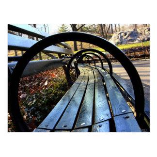 Unique Park Bench in Central Park, NYC Postcard