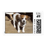 Unique Postage Stamps