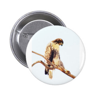 Unique Red-Tailed Hawk Photo Custom Pins