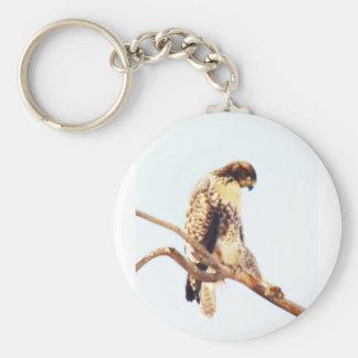 Unique Red-Tailed Hawk Photo Custom Key Chain