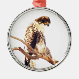 Unique Red-Tailed Hawk Photo Custom Ornament