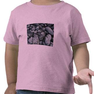 Unique Rocks on coast of Baja, Mexico T Shirts