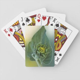 Unique - Sunflower leaf embrace sunflower Playing Cards