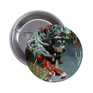 Unique Toby the terrier at Christmas Pinback Buttons