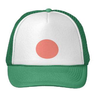 Unique Vintage Background. Retro Style Pink Color Hats